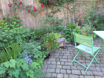 Garden one bed flat offered, need 2 bed